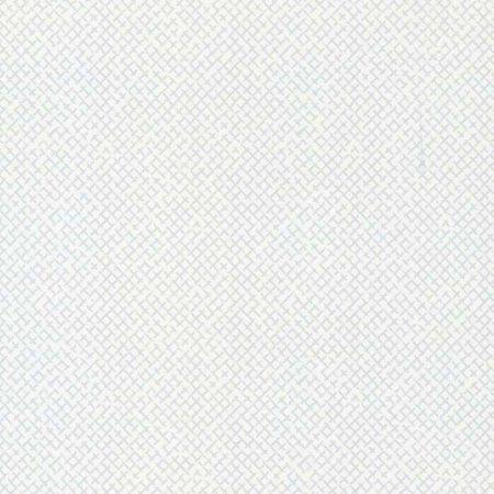 CANNAGE GRIS – 11161109-en
