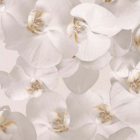ORCHIDEES COEUR JAUNE – 51152102-en