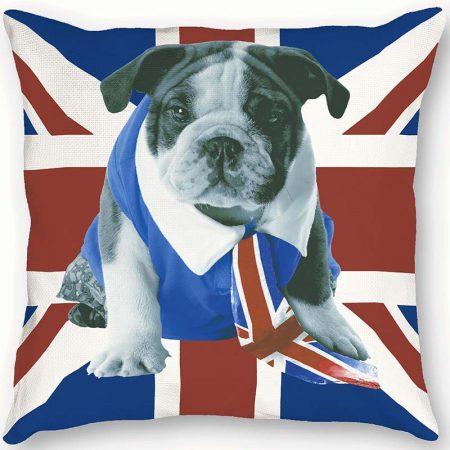 COUSSIN DOG – 63170301-en