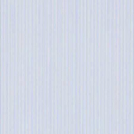 RAYURE FINE BLEUE – 11092001-en