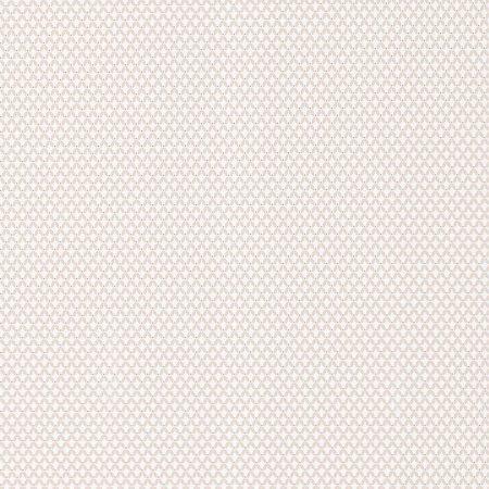 PETIT CACHEMIRE BEIGE – 36171207-en