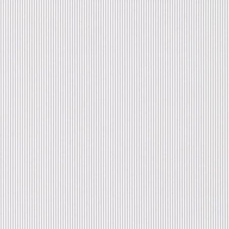 RAYURE FINE GRISE – 36171509-en
