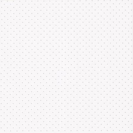 POIS GRIS – 36171609-en