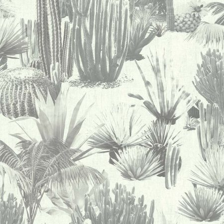 DESERT MEXICAIN NOIR ET BLANC – 51171209A-en
