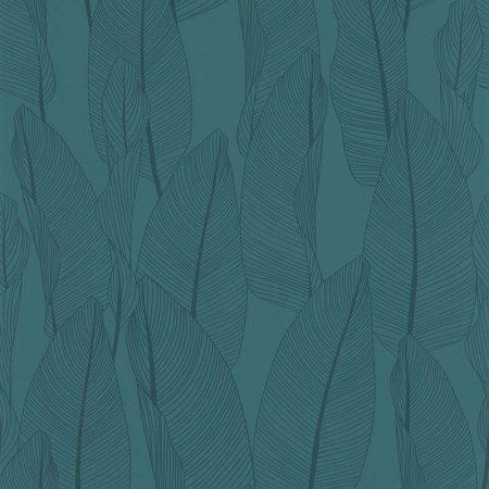 BANANIER BLEU – 51184701-en