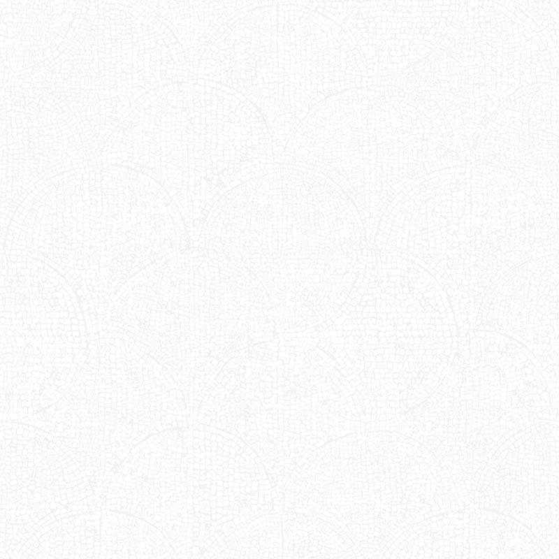 ÉCAILLE GRIS CLAIR – 51195209A-en