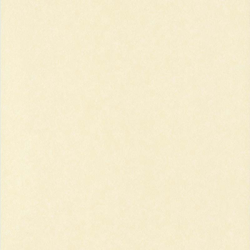 ACIER BROSSÉ BEIGE CLAIR – 65130407A-en